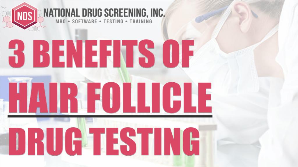 Video Blog - Hair Follicle Drug Testing