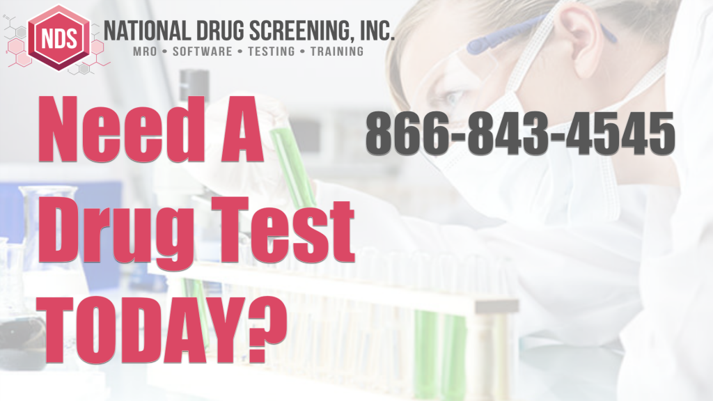 Video Blog - Do You Need a Drug Test Today?