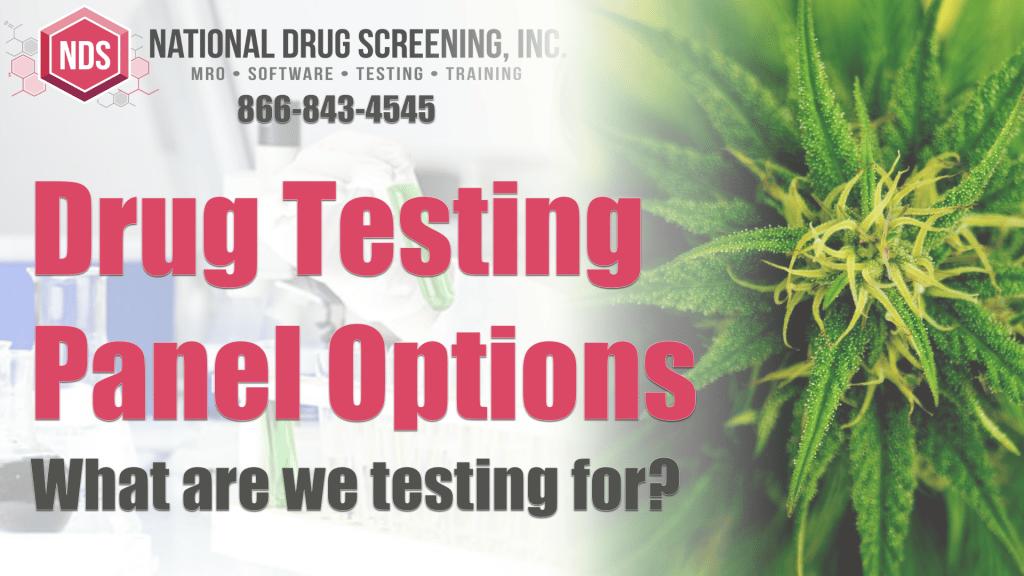 Drug Testing Panels
