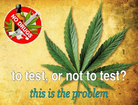 Video Blog - Dropping Marijuana from Your Drug Testing Program?