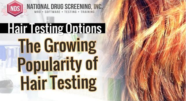 Video Blog: Hair Follicle Drug and Alcohol Testing Options (and Differences)