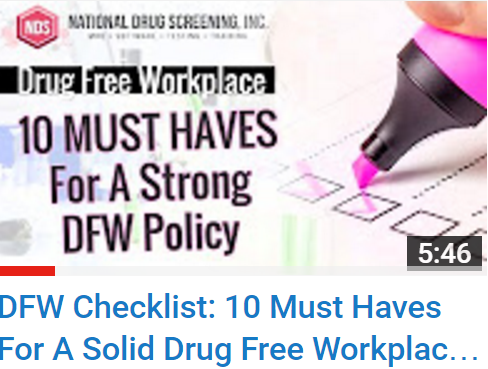 Video Blog: 10 Must Haves For A Solid Drug Free Workplace Policy