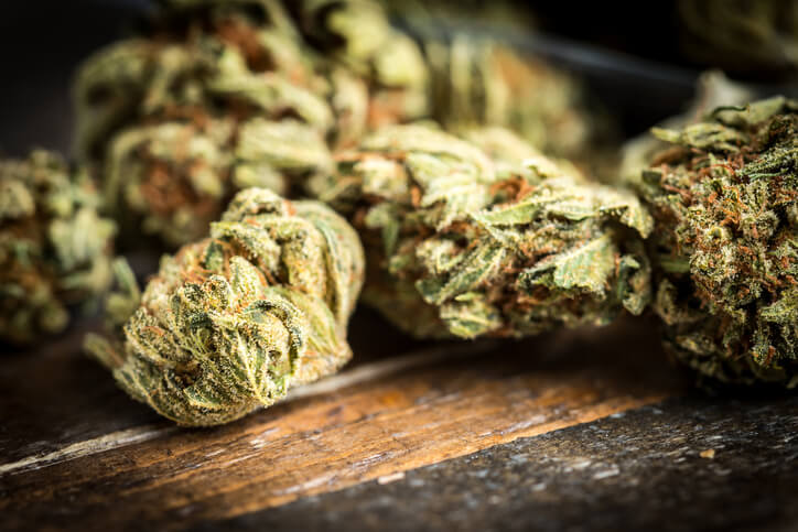 Drug Testing in Legal Marijuana States