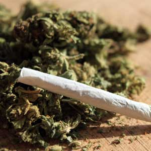 Lawsuit Filed to Allow Smoked Marijuana in Florida