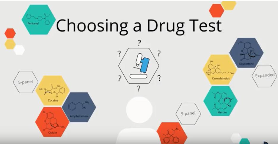 Video Blog: Choosing A Drug Test