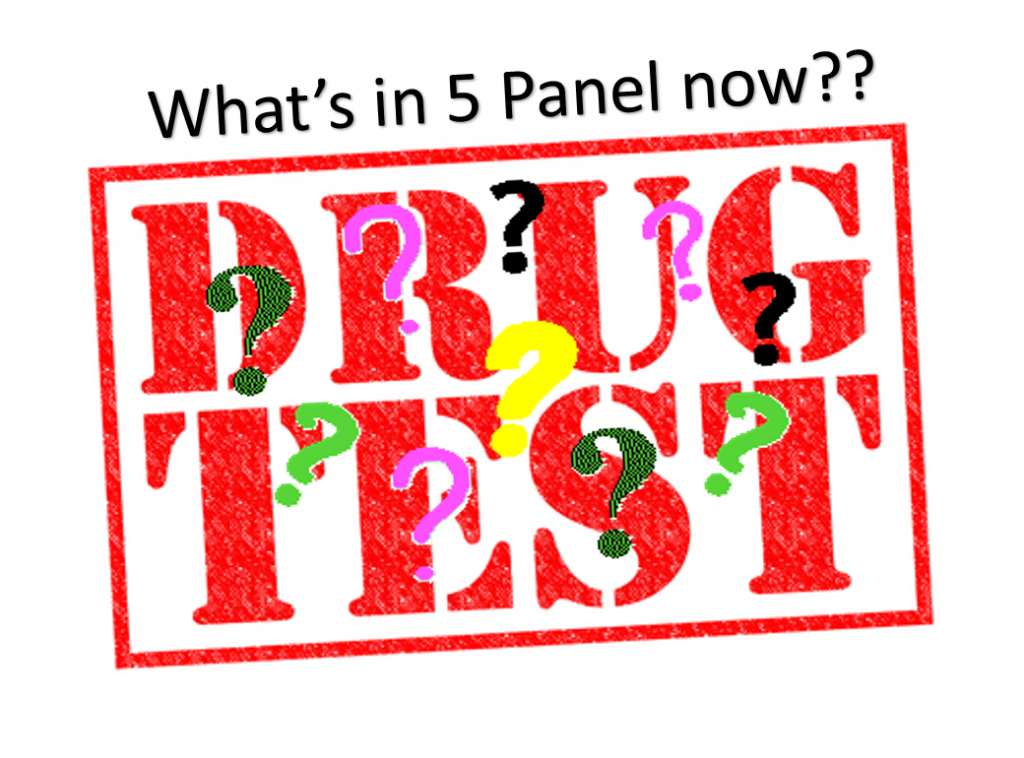 What is a 5 Panel DOT Like Drug Test?