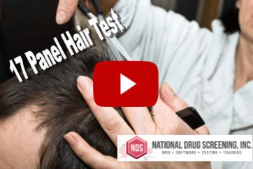 Video Blog: 17 Panel Hair Drug Test