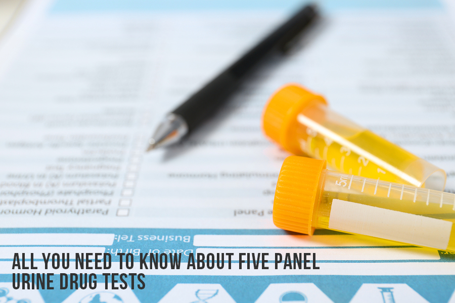 All You Need To Know About Five Panel Urine Drug Tests