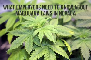 What Employers Need To Know About Marijuana Laws in Nevada