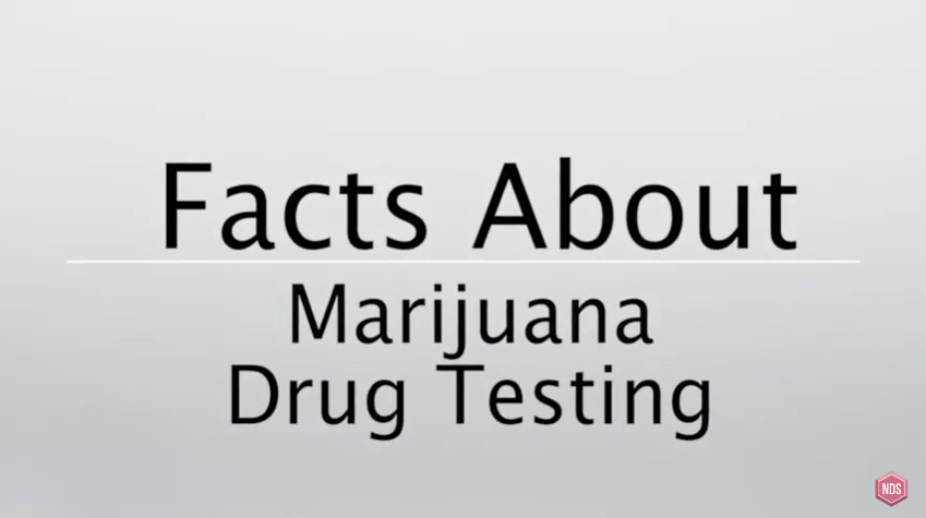 Some Facts About Marijuana
