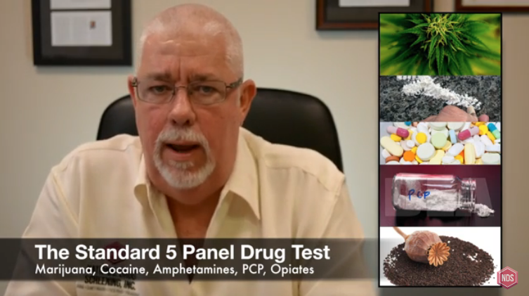 What Are The Panels The Drug Tests Test For?