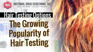 Which Labs Perform Hair Drug Testing?