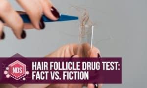 Hair Follicle Drug Test: Fact Vs. Fiction