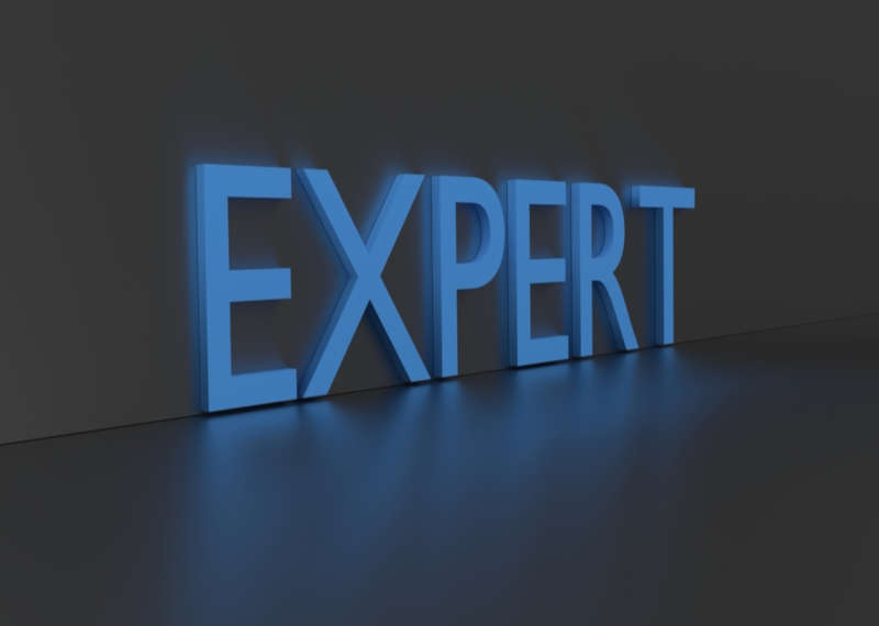 the word expert